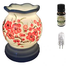 Combo tinh dầu sả chanh Eco oil 10ml cùng đèn xông tinh dầu MNB14 và 1 bóng đèn