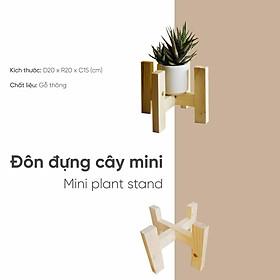 Đôn gỗ đựng cây cảnh mini để bàn đường kính 16cm lắp ghép đơn giản