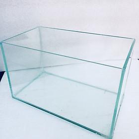 Bể cá mini để bàn 30x17x17cm
