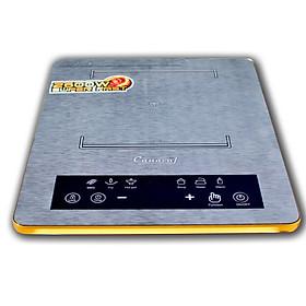 Bếp điện từ đơn CANAVAL CA-6618 Inverte Bo điều khiển Italia Chíp điều khiển SIMENS Mặt kính Ceramic Viền vàng 4 cạnh - Màu đen (2600W) - Hàng chính hãng
