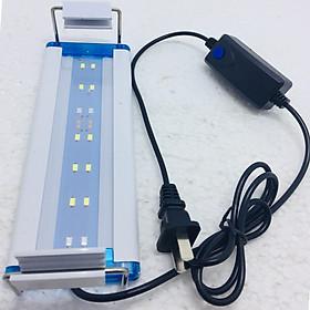 Đèn led cho hồ cá 20 đến 30 cm