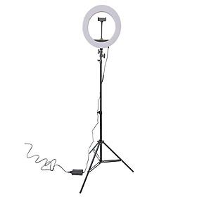 Bộ tripod, giá đỡ livestream có đèn Led 3 chế độ  HQ-14 (36cm), kèm kẹp điện thoại - Hỗ trợ ánh sáng chụp ảnh, livestream, quay tiktok hiêu quả - Hàng chính hãng
