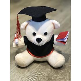 Gấu bông tốt nghiệp màu trắng lông mịn size 20cm