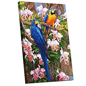 Tranh sơn dầu số hóa tự tô đã căn khung 40x50cm- E308 đôi chim vẹt
