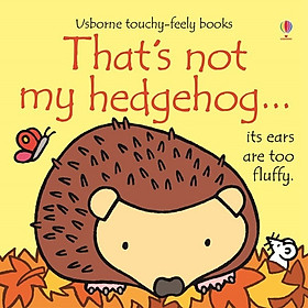 Usborne That's not my hedgehog
