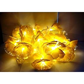 Dây đèn led sợi quang trang trí lễ tết