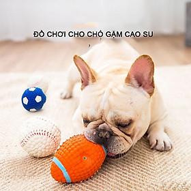 Bóng đồ chơi cho chó hipipett gặm cao su bóng banh bóng bầu dục giúp sạch răng kẹp hạt thức ăn Phụ kiện thú cưng