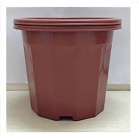 Hình ảnh 2 Chậu Nhựa Trồng Hoa, Cây Cảnh E230 CN