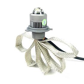 Bộ đèn râu mini bi cầu H4 Ánh sáng vàng trắng Green Networks Group ( 1 Đèn )