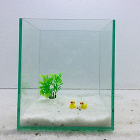 Bể cá mini để bàn 15x15x20cm tiểu cảnh