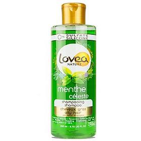 Dầu gội Lovea tchiết xuất bạc hà dành cho tóc dầu 250ml