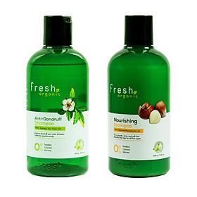 Combo 2 dầu gội Fresh organic tea tree - macadamia oil 250g