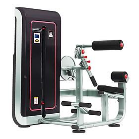 Máy khối tập cơ bụng và cơ lưng Gym TigerSport TGS-1009