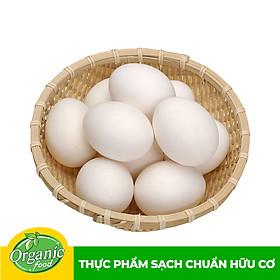 [Chỉ Giao HCM] - Trứng vịt Omega 3 Organicfood (5 quả)