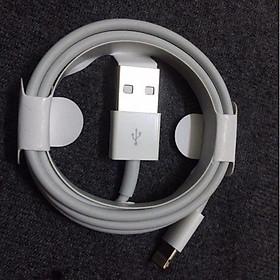 Dây cáp sạc Lightning Foxconn 5IC Sạc Siêu Nhanh Các Dòng Iphone 6,6S,7,8Plus/XR,XS Max