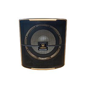 Loa sub điện Leader 12 -  Bass 30 - Hàng chính hãng