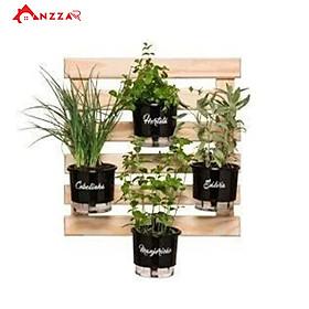 Kệ gỗ treo tường trang trí ban công, kệ trang trí Anzzar, giá gỗ thông treo cây, hoa