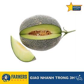 [Chỉ Giao HCM] - Dưa lưới Ichiba giống Nhật (1.7kg/Trái) - Vị dưa giòn, ngọt và thơm