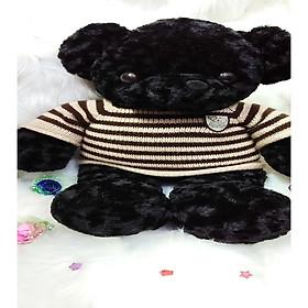 Hình đại diện sản phẩm Gấu bông Teddy GẤU CHÓ