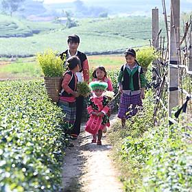 Tour 2N1Đ Mộc Châu - Mai Châu - Happy Land, Khởi Hành Thứ 7 Hàng Tuần Từ Hà Nội