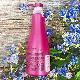 Dầu xả Obsidian Color Care Conditioner chăm sóc tóc nhuộm 580ml-1
