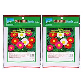 Bộ 2 Gói Hạt Giống Hoa Cúc Đà Lạt PN-22 Phú Nông (Trên 1500 Hạt / Gói)