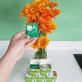 """Nước Cắm Hoa Đồng Tiền Lâu Tàn (Set 80 gói dạng bột) nhập khẩu Israel - Food For CUT Flowers giúp hoa tươi lâu hơn, ngăn """"gãy cổ"""" hoa và hạn chế thối nước"""