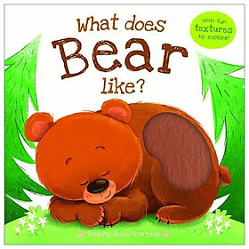 What Does Bear Like?