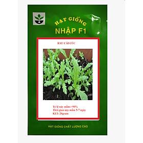 20 gram hạt giống rau cải cúc