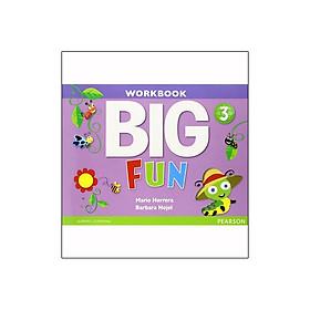 Big Fun 3 Workbook with Audio CD