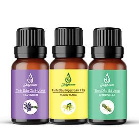 Combo Tinh dầu thơm phòng: Tinh dầu Oải Hương - Tinh dầu Ngọc Lan Tây - Tinh dầu Sả Java 10ml/chai JULYHOUSE - Tinh dầu thiên nhiên