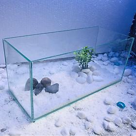 Bể cá để bàn - 30x13x15 tặng phụ kiên- hồ cá mini