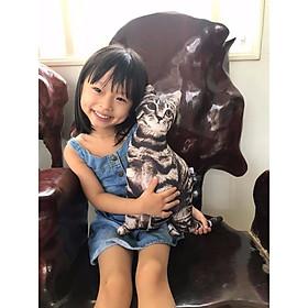 Gối Ôm Con Mèo Cho Bé 55cm Nhồi Bông Giống Như Thật Gối Ôm Hình Thú Cưng Dễ Thương