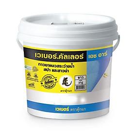 Keo chà ron / chít mạch  2 thành phần gốc xi măng chuyên dùng cho HỒ BƠI, PHÒNG XÔNG HƠI- Weber.color -HR (màu trắng)