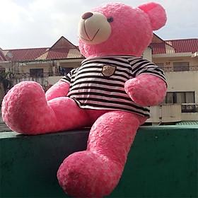 Gấu bông Teddy ICHIGO khổ vải 1m2 màu Hồng