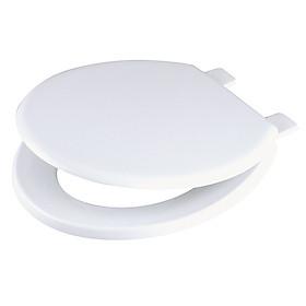 Nắp nhựa Sunzin SZ02 thay thế cho bồn cầu C306 Inax (trắng)