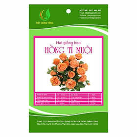 Hình đại diện sản phẩm Combo 2 gói Hạt giống hoa Hồng tỉ muội Golden Seeds 10 Hạt