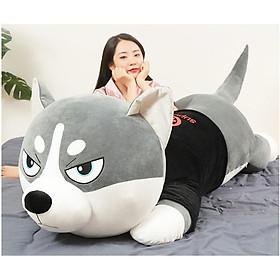 Gấu bông Chó Husky Siêu To Khổng Lồ - gối ôm chó ngáo size 1m1 - 1m5 - hình thât - video