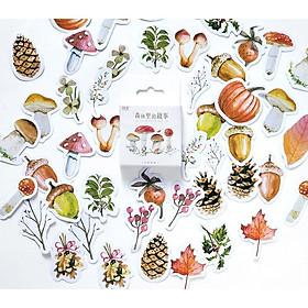 Hộp 45 Miếng Dán Sticker Trang Trí Nhật Ký Khu Rừng