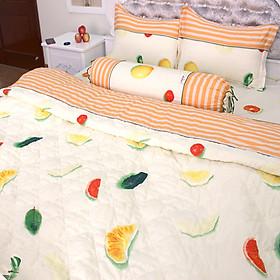 Bộ Ga Gối 100% Cotton Sợi Bông Hàn Quốc Julia 249BK18 (1m8 x 2m)