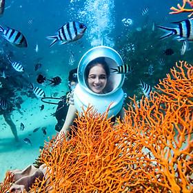 Tour [PHÚ QUỐC] đi bộ dưới đáy biển - Gói tiêu chuẩn