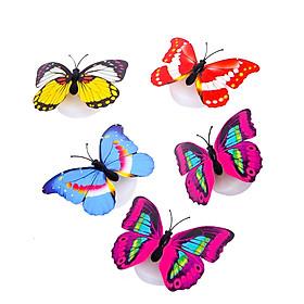 Bộ 05 bướm phát sáng dán tường nhiều màu sắc - Màu ngẫu nhiên