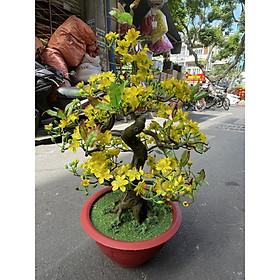 Cây Hoa Mai Bonsai Nhựa Cao 80 cm Hoa Mai Giả Trang Trí Tết