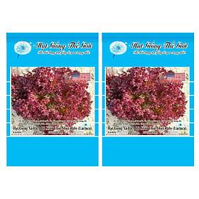 Bộ 2 Gói Hạt Giống Rau Xà Lách - Đỏ Xoăn Chịu Nhiệt Ruby (Lactuca sativa) 2000h