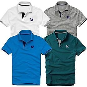 Bộ 4 áo thun nam cổ bẻ cao cấp DokaFashion, chất liệu thun cá sấu 4 chiều ngoại nhập - Trắng, Xám đậm, Xanh dương, Xanh cổ vịt