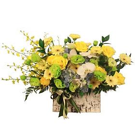 Hộp hoa tươi - Ánh Sáng Lấp Lánh 4165