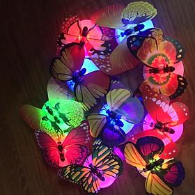 Combo 10c Đèn ngủ hình bướm - Đèn led dán tường hình con bướm