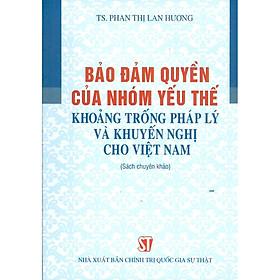 Bảo Đảm Quyền Của Nhóm Yếu Thế Khoảng Trống Pháp Lý Và Khuyến Nghị Cho Việt Nam (Sách chuyên khảo)