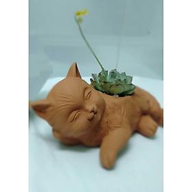 Chậu đất nung hình Mèo trồng cây sen đá xương rồng, kích thước Dài 22cm x Cao 13cm x Rộng 8cm, độ rộng miệng chậu 6.5cm