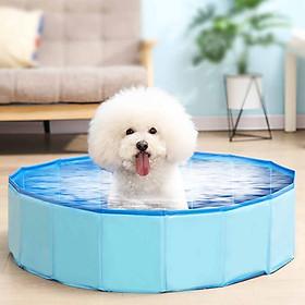 Bể Bơi Cho Thú Cưng Có Thể Gấp Gọn